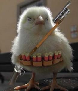 Um Chocobo filhote muito bem armado!